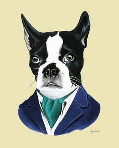 This Boston Terrier is a popular assistant at an arts based public school. During the days he delights the children and adults with his wit,
