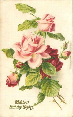 CON LOS MEJORES DESEOS DEL CUMPLEAÑOS rosas