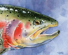 RAINBOW TROUT Fly Fishing Art Print Signed by by k9artgallery