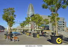 http://l7.alamy.com/zooms/f13c506b54494d8d96f8ec670998a132/young-trees-in-large-pots-beside-design-museum-and-torre-agbar-skyscraper-f32hwd.jpg