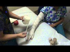 61 best lymphedema images  lymphatic system lymph massage