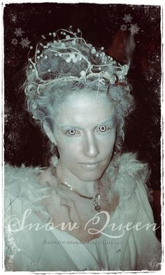 Cool Snow Queen Costume...