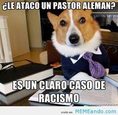 Jajajaja un buen rato de humor nos viene bien a todos! Denle like a la fanpage, la van a pasar de lujo:   www.facebook.com/lamemeria