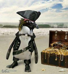 Argh ! Pirate Penguin
