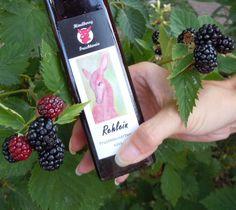 Fruit wine from Austria Blackberry, Raspberry, Cupcakes, Pink Champagne, Brewery, Austria, Trip Advisor, Alcohol, Apple
