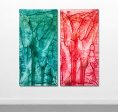 595 - 596 by Anita Levering  762 * 1524 mm each acrylic on polyester 2014