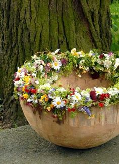 .Eye Candy - adorn your planters with flowers.