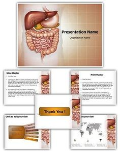 Abdominal Compartment Syndrome Point Presentation Template Is One Of The Best Medical Templates By Editabletemplates