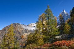 Tour of Mont Blanc Hike - Maps, Routes and Itineraries
