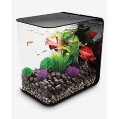 Black biOrb FLOW 30 - 8 Gallon Aquarium with LED Lighting