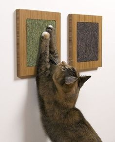 Framed cat scratch posts. Such a cool idea, especially since you can mount it at the perfect height for your cat! #catfurniture #coolidea