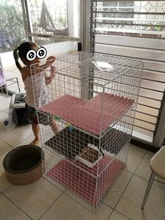 f:id:madokachandayo:20180315182012j:plain Cat Enclosure, Animals, Animaux, Animal, Animales, Animais