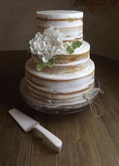 Naked Elegant Cake!!! Looks so delicious!