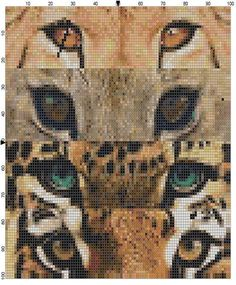 Cat's Eyes Cross Stitch Pattern Instant by theelegantstitchery, $15.00
