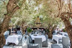 Who wouldn't like to socialize in this setting? LOVE.  hope the food and service is good. PUMP Lounge By Lisa Vanderpump, Opening May 16 - First Look - Eater LA