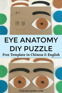How to Make a Felt Eye Puzzle Human Anatomy Activity for Kids is part of Kids Crafts Preschool Elementary Schools A felt eye puzzle is a fun, handson way to learn about the parts of the eye! Human Body Activities, Kids Learning Activities, Montessori Activities, Montessori Homeschool, Toddler Learning, Educational Activities, Body Preschool, Preschool Crafts, Eye Anatomy