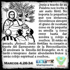 """Del santo Evangelio según san Marcos 4,26-34 """"En aquel tiempo, dijo Jesús a la gente: """"El reino de Dios se parece a un hombre que echa simiente en la tierra. Él duerme de noche y se levanta de mañana; la semilla germina y va creciendo, sin que él sepa cómo. La tierra va produciendo la cosecha ella sola: primero los tallos, luego la espiga, después el grano. Cuando el grano está a punto, se mete la hoz, porque ha llegado la siega."""" Dijo también: """"¿Con qué podemos comparar el reino de Dios?…"""