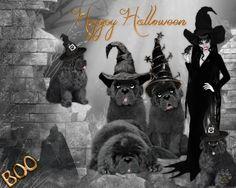 Halloween Halloween, Movie Posters, Movies, Art, 2016 Movies, Film Poster, Films, Popcorn Posters, Kunst
