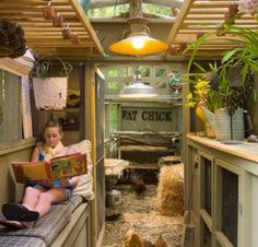 Chickens & Poultry | Living the Country Life