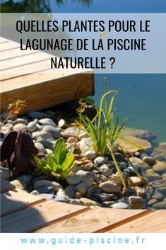 R glementation sur la piscine naturelle jardins - Construction piscine reglementation ...