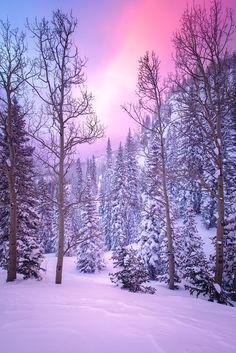 Snow globe: mid-winter sunrise (Rocky Mountain National Park, Colorado) by Wayne Boland Winter Szenen, Winter Magic, Winter Time, Winter Sunset, 2016 Winter, Winter Photography, Landscape Photography, Nature Photography, Landscape Photos