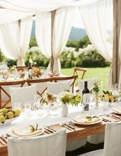 al fresco luncheon, canopy tent, photo by Collin Hughes