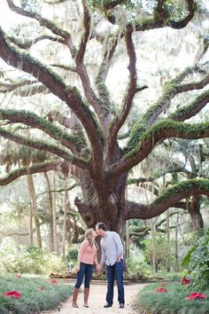 Great Oak @ washington State Park, St. Augustine FL. Style Me Pretty | Gallery | Picture | #913747