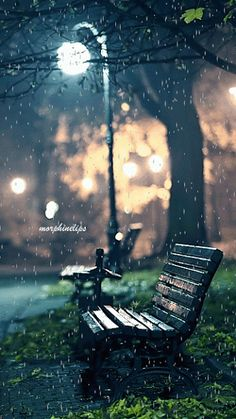 A late night after drinking and hanging out with friends. It started to rain on the walk home alone The post A late night after drinking and hanging out with friends. It started to rain on appeared first on Wallpapers. Photo Background Images, Photo Backgrounds, Wallpaper Backgrounds, Rain Gif, Rain Wallpapers, Phone Wallpapers, Rain Photography, Photography Hacks, Rainy Day Photography