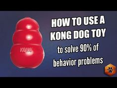 "Kong Classic toy as a ""tool,"" how to stuff the Kong with healthy ingredients and keep your dog busy. - YouTube"