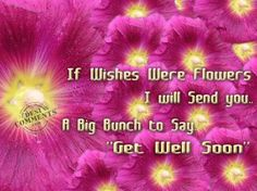 927 Best Get Well Quotes Images Get Well Get Well Soon Get Well