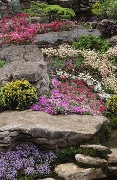 ideen gestaltung steingarten,steingarten 60 ideen japanischer ...