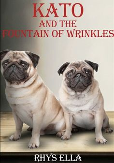 Will keep you guessing and laughing - Kato and the Fountain of Wrinkles by Rhys Ella Kato, French Bulldog, Fountain, Tea Cups, Author, Reading, Funny, Books, Amazon