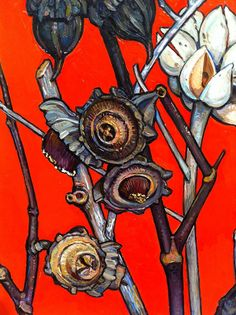 Ignorant waffle: May Criss Canning Australian Wildflowers, Australian Native Flowers, Australian Artists, Australian Painting, Australian Plants, Botanical Drawings, Botanical Art, Botanical Illustration, Illustration Art
