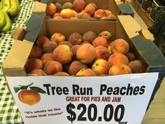 Tree run peaches! Fresh in our store this week. What will you make with these?