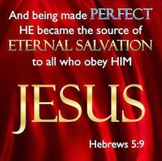 Leef je geloof: Hebreeën 5: Jezus is onze Hogepriester