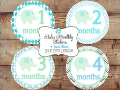 Monthly Baby Stickers Monthly Bodysuit by blueeyesdesigns27, $12.00