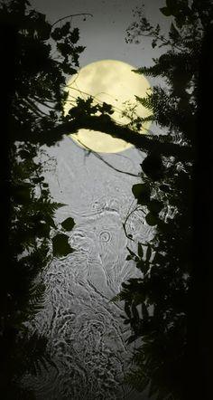 SUSAN DERGES http://www.widewalls.ch/artist/susan-derges/ #nature #art #photography