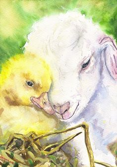 Little freinds baby Chick and Lamb portrait Print of the