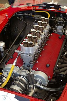 The ledgendary boxer. 1957 Ferrari Testa Rossa 250 TR - this is not an engine its a heart!