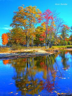 Autumn Trees on Lake Winnipesaukee, New Hampshire  CLICK THIS PIN if you want to learn how you can EARN MONEY while surfing on Pinterest