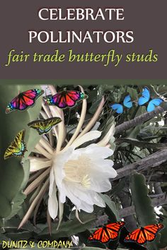 Wear your favorite butterflies. This is one way to catch a couple of them :). These fair trade earrings will be so much fun to wear. These are created with recycled wood. #fairtrade #butterflies #butterflyearrings #fairtradejewelry