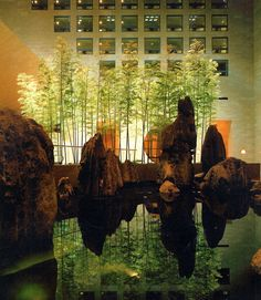 #interior #atrium #courtyard #rocks #planting #trees #uplight #stone #reflection #pond #extint #orange #wallwash