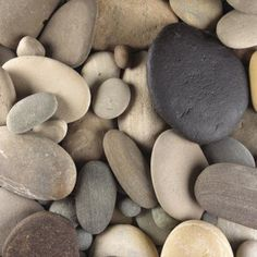 A rock garden adds texture and color to a difficult area of a yard, such as a hillside, and it serves as a focal point. Adding bushes to a rock garden adds a touch of plant life that doesn't ...
