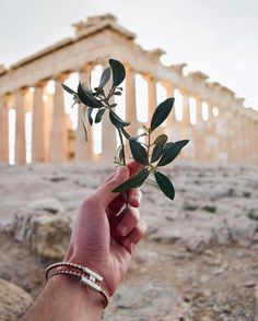 Acropolis of Athens. My Athens, Athens Greece, Travel Around The World, Around The Worlds, Mount Olympus, Adventure Is Out There, Ancient Greece, Greece Travel, Greek Islands