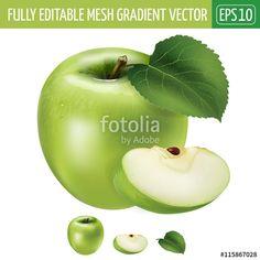 Vettoriale: Green apple on white background. Vector illustration