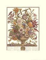 September/Twelve Months of Flowers, 1730 Fine Art Print