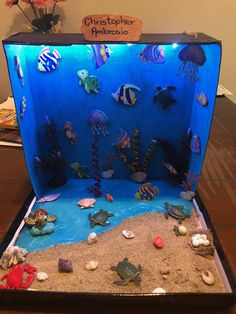 Tortuga marina Ocean Projects, Science Projects For Kids, School Projects, Crafts For Kids, Ocean Activities, Preschool Learning Activities, Toddler Activities, Preschool Activities, Ocean Diorama