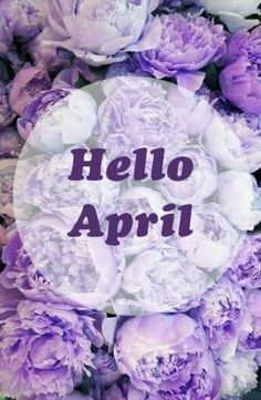 HELLO APRIL ..... Purple Flowers