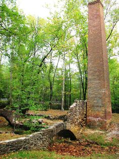 Pinelands National Reserve - the United States first national reserve encompasses over one-million acres of farms, forests and wetlands.