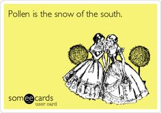 Ecards - Pollen is the snow of the south. Ohhh how terribly true this is. And it will kill you. It WILL.